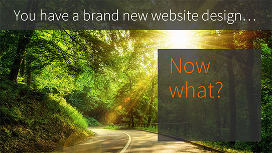 Intranet CMS websites - you have a brand new website